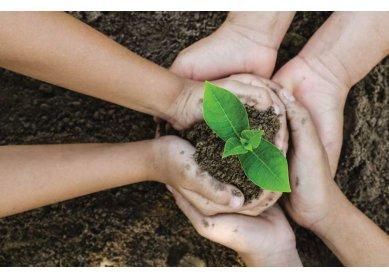A função da igreja no meio ambiente