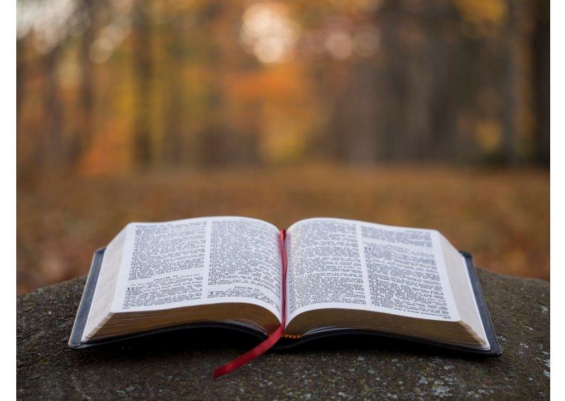 bible-639-800x568.jpg